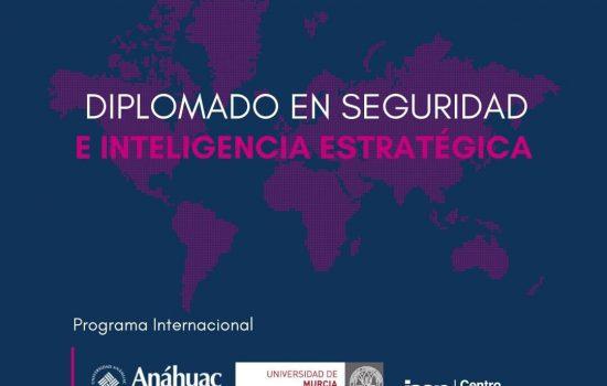 _new_instagram_estatico_diplomado_en_seguridad_